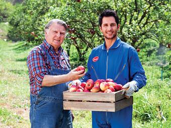 shezan-website-blogs-orchards-340x256